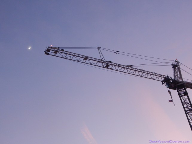 crane and moon over new england conservatory