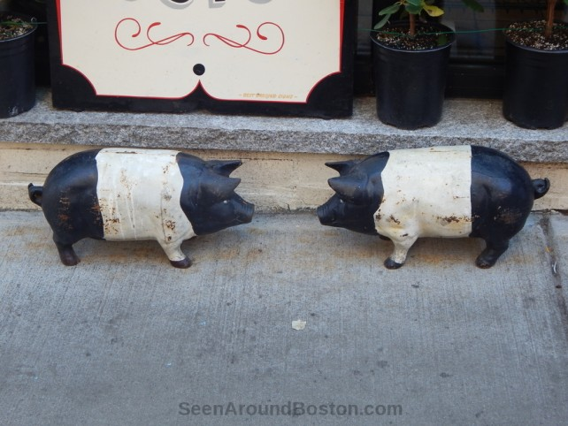 cast iron pigs on sidewalk, north end boston