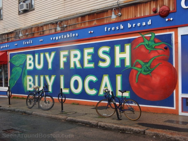 city feed and supply, jamaica plain murals